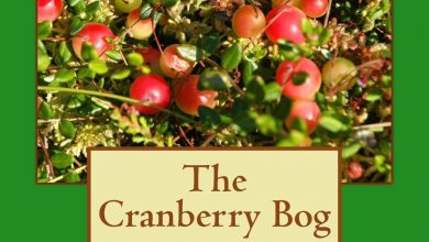 Photo of The Cranberry Bog – Book Review