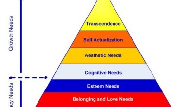 Photo of Understanding Motivation through Maslow's Hierarchy of Needs