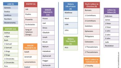 Photo of Understanding the Bible, Book Summary