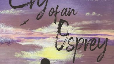 Photo of Book Review: Cry of an Osprey by Angie Vancise