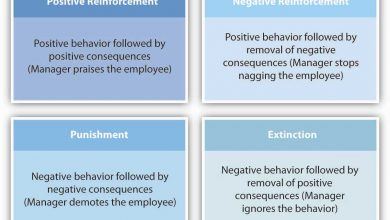 Photo of Four Major Theories on Motivation
