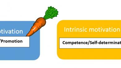 Photo of Instrumental Vs Integrative Motivation