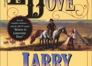 Photo of The Lonesome Wild-West, A Book Review