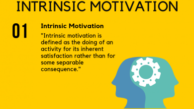 Photo of What Is Intrinsic Motivation?
